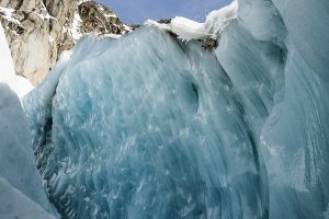 ICE CALL – BACKYARDS PROJECT – SAM FAVRE
