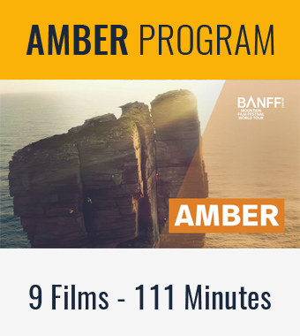 2020-programs-newsletter-amber