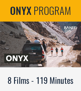 2020-programs-newsletter-onyx